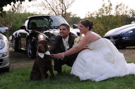 chien-a-votre-mariage