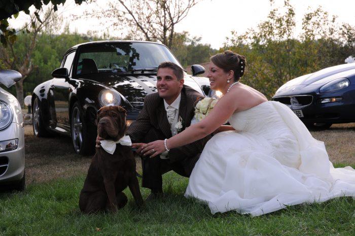 votre chien votre mariage le futur mari. Black Bedroom Furniture Sets. Home Design Ideas