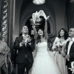 Un lâcher de colombes le jour de votre mariage