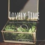 Lovely Time : Photographe et Vidéaste Mariage