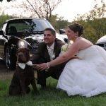 Votre chien à votre mariage ?