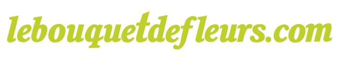 logo-lebouquetdefleurs